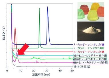 カラギナーゼ3種の基質特異性を利用した食品素材中カラギーナンの識別