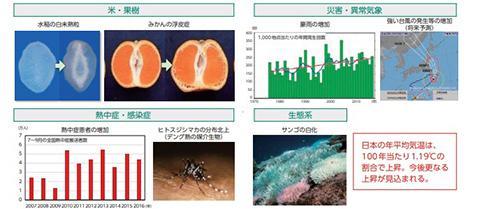 日本における気候変動の影響(資料・提供:農林水産省、気象庁、消防庁、国立感染症研究所、環境省)