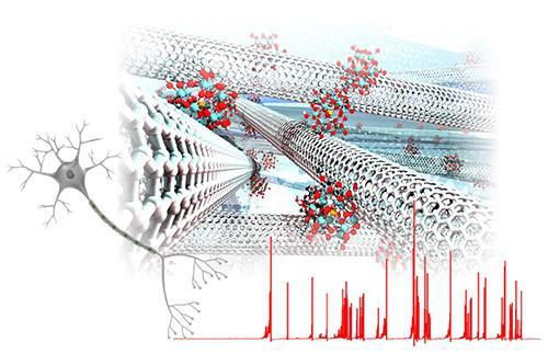 図3 ナノ材料の揺らぎによって形成される乱雑ネットワーク。次世代のニューラルネットワークの実現に期待をいだかせる。(大阪大学プレスリリースより)
