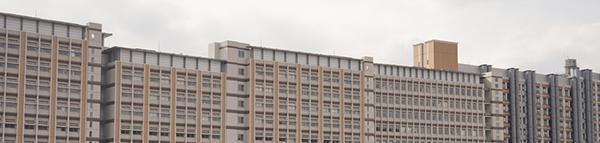 写真2 九州大学マス・フォア・インダストリ研究所がある広大な伊都キャンパス内の建物(九州大学提供)