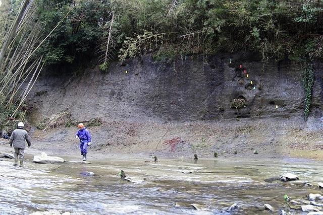 「チバニアン」命名の根拠となった地層=千葉県市原市(研究グループ提供)