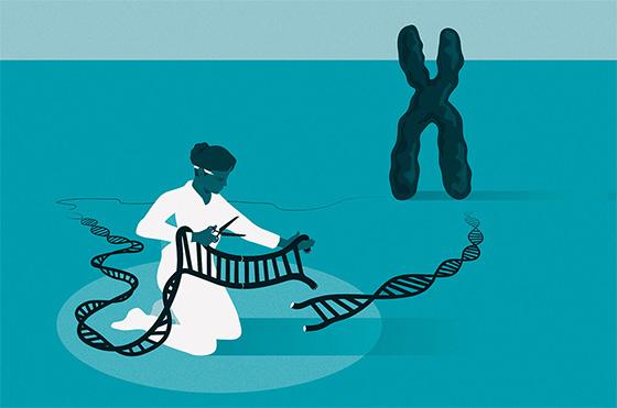 遺伝子のはさみを使うと、事実上すべての生物のゲノムを編集できる(ノーベル財団提供)(c) Johan Jarnestad/The Royal Swedish Academy of Sciences.