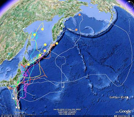 6月30日までの衛星追跡経路