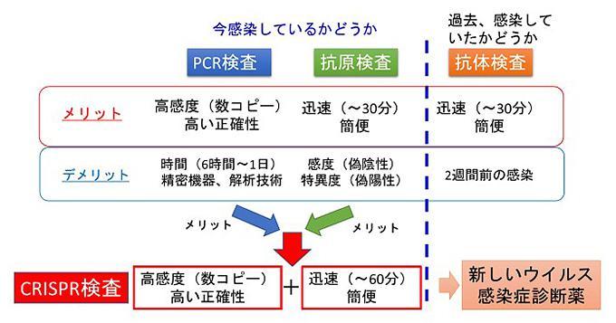 開発された迅速診断法と従来のPCR検査、抗原検査、抗体検査との比較概念図(東京大学医科学研究所提供)