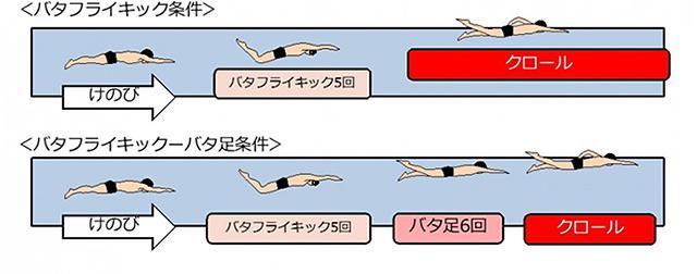 実験の概要。クロールを始める前にバタフライキックのみをするパターンと、バタ足を加えるパターンで速度を比較した(順天堂大学提供)