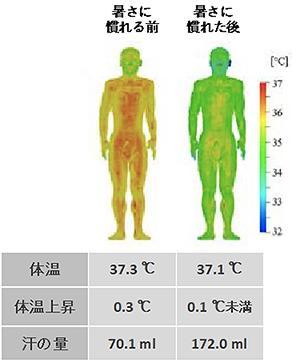 図1 気温31℃、湿度61%で1時間安静にしていたときの体温と汗の量(プレスリリースの図をもとに作成)