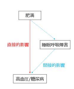 図 肥満、睡眠呼吸障害それぞれと高血圧・糖尿病との関連図(提供・京都大学)