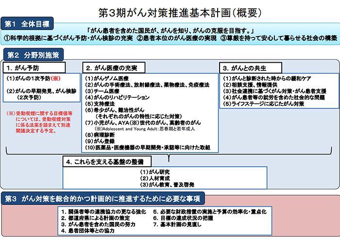 図 「第3期がん対策推進基本計画」の概要(提供・厚労省)