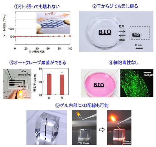 新しいゲル電極の安定性(丈夫さ)の検証