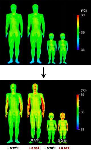 歩行前(上)と後(下)の体温変化と体温分布。日なたを歩いた場合の腕や頭の温度上昇が明確に示されている(名古屋工業大学、JAMSTEC、JSTの研究グループ提供)
