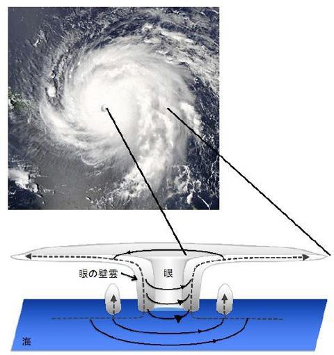 図1 台風の構造を示す概念図。中心の「目」(図では「眼」と表記されている)の周りを囲む「目の壁雲」、その外側では反時計回りの強い風が吹いている。(図はいずれも宮本さんら研究グループ提供)