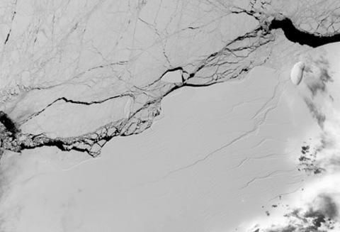 NASAの衛星が2017年3月に撮影した「ラーセンC」の亀裂 (提供・NASA/USGS Landsat)