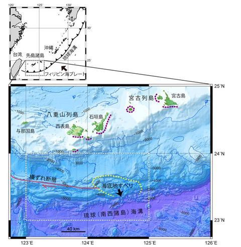 石垣島、宮古島周辺の巨大津波の発生原因とみられる海底地滑りの位置。紫の点線が、1771年に八重山巨大津波が押し寄せた海岸を示す。赤線は海底地すべりの原因をつくったとみられる横ずれ断層(提供・産業技術総合研究所)