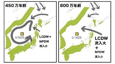 図 日本海周辺の海流。NPDWは北太平洋の深層の水、LCDWは南極周辺から流れてきた水。450万年前になると、太平洋から流れ込むこれらの水は少なくなり、日本海の中だけで反時計回りに循環する海流ができたと考えらえる。U1425は、分析に使った試料を海底で採取した場所。(小坂さんら研究グループ提供)