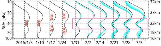 図2 渡辺さんらがコンピューターで再現した赤道上空の風。2月1日のデータを出発点にして計算した。水色の線が計算結果。複数の計算を行ったため、線も複数ある。それぞれの日付の縦の点線より右側の部分が「西風」、左側が「東風」を表す。黒い線が観測値。ピンクの四角で囲んだ部分で、本来の「西風」が逆転して「東風」になっていく。準2年周期振動の崩壊だ。その様子が再現された。