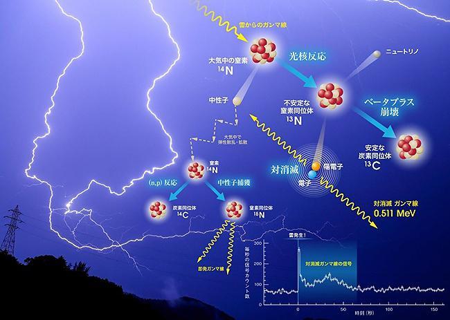 図 雷の際に起きている核反応。左上方からやってきたガンマ線が窒素原子の原子核にぶつかり、「光核反応」が起きる。そこから始まる一連の核反応の過程で「陽電子」(図中の黄色い玉)が発生し、電子と出合って消滅(「対消滅」)するときに、「0.511メガ電子ボルト」のガンマ線を出す。(榎戸さんら研究グループ提供)