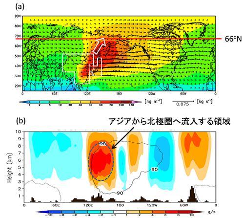 図3a.春季の高度5キロメートルにおける東アジア起源のブラックカーボン濃度の分布の様子。白い線で囲われた部分が東アジア地域。北緯66度33分以北が北極圏 b.北緯66度における東アジア起源ブラックカーボンの流入・流出量。暖色系は北極圏への流入を、寒色系は北極圏からの流出を示す 提供:国立環境研究所(a,bとも)