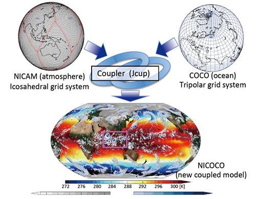 図 新しい「結合モデル」の概念図。大気を再現するモデル(NICAM)と海の動きを再現するモデル(COCO)を組み合わせて、新しいモデル(NICOCO)を作った。紫の四角で囲まれている海域に、「マッデン・ジュリアン振動」の雲集団が再現されている。(宮川さんら研究グループ提供)