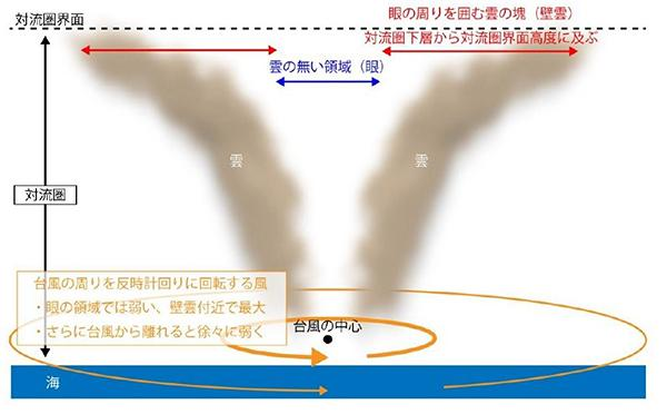図 台風の目と、その周りの「壁雲」。壁雲は高度10キロメートルくらいまでの「対流圏」の上面にまで届く。高度が増すにしたがって外側に開いているので、雲の上端がより高くなれば、壁雲に覆われる範囲は外側に広がる。(山田さんら研究グループ提供)