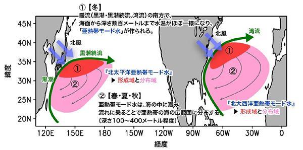 図 亜熱帯の巨大な水の塊「亜熱帯モード水」の概念図。左が太平洋で、右が大西洋。冬に海面が冷やされて水深数百メートルまでかき混ぜられ((1))、春から秋にかけて、南に潜行して広がる((2))。(杉本さんら研究グループ提供)