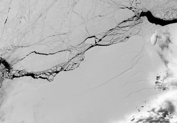 画像2 NASAの衛星が2017年3月に撮影した「ラーセンC」の亀裂 (提供・NASA/USGS Landsat)