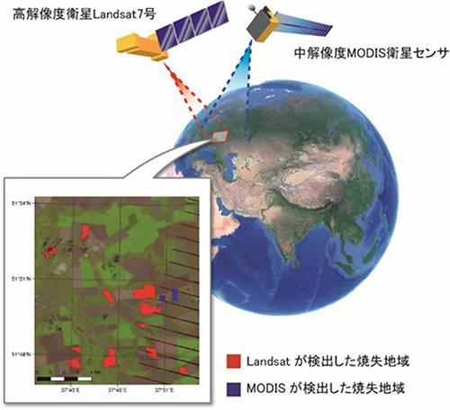 図2 MODISと解像度30メートルのLandsatのセンサーがとらえた耕作地火災の焼失面積の比較。Landsatのセンサーがとらえた焼失地域(赤)の一部しかMODIS(青)は検出できなかった。