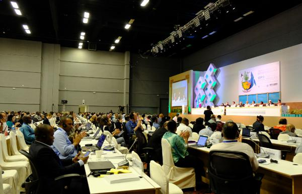 写真3 COP13本会議の総会「自然との共生に関する双方向対話」(2016年12月13日)