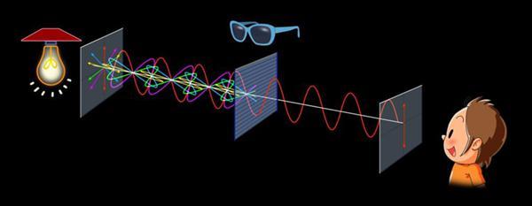 図3 偏光サングラスのしくみ。さまざまな方向に振動する光のうち、一定の方向に振動する光だけを透過させる。