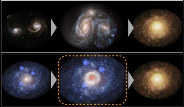 画像2 円盤型の銀河から楕円型の銀河へと進化する道筋の模式図。従来は2つの円盤型銀河が衝突合体して楕円型銀河へと進化すると考えられていた(上)。今回の観測では、円盤型銀河の中央部で激しい星形成が起きることによって楕円型へと進化する新たな道筋が明らかになった