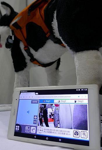 写真3 犬の位置や前方の映像を表示するタブレット端末