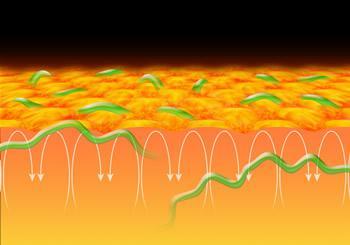 太陽表面の粒状斑と短寿命水平磁場想像図