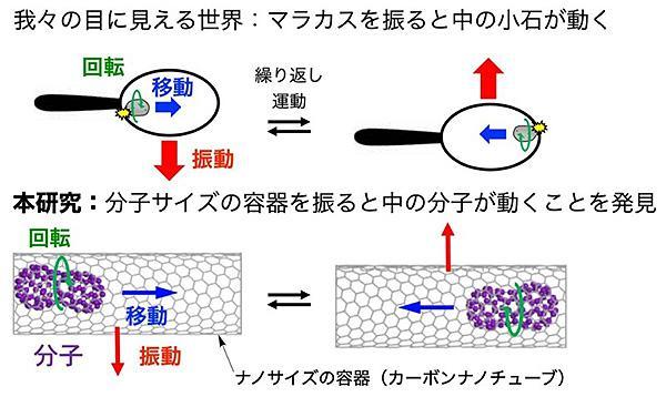 分子の動きを撮影した研究の概要(東京大学提供)