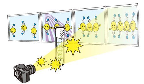 分子動画による化学反応の追跡(概念図)。SACLAのパルスX線を使ってストロボ撮影して、フェムト秒の時間スケールで原子の動きを追跡できた。この研究では光刺激で化学反応を開始させ、その後高速に変化していく分子構造をストロボ測定して分子動画撮影することで、原子の反応性・結合状態・機能性の変化について観測することに成功した。