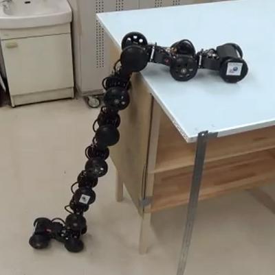 写真1 ヘビ型ロボットが高さ1メートルの段差を上る様子〔提供・電気通信大学・金沢大学研究グループ〕