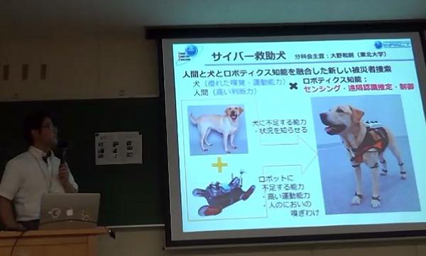 写真8.サイバースーツを装着したサイバー救助犬。スーツの改良につれて犬の負担が軽減していることが犬の表情の変化からも見て取れたという