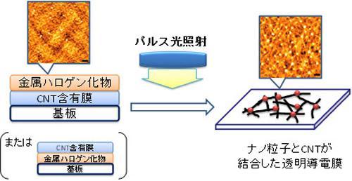 今回開発したカーボンナノチューブ透明導電膜の作製プロセス