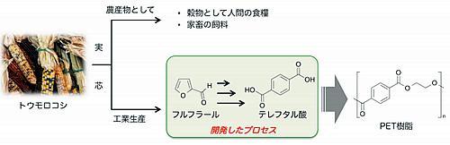 バイオマスからPET樹脂までの合成ルート