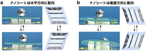 酸化チタンナノシートを内包するヒドロゲルの防振機能。水平方向に配向したナノシートを内包するヒドロゲル(a)では、設置面からの振動が効率よく遮断され、ガラス板および鉄球は安定に保持されるのに対し、垂直方向に配向したナノシートを内包するヒドロゲル(b)では、ガラス板および鉄球はすぐに落下してしまう。