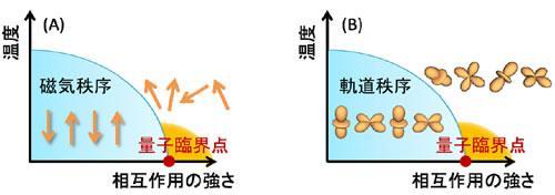 (A)は 磁気秩序が抑制されて生じる量子臨界点の概念図。量子臨界点では、スピンが秩序状態からバラバラに振る舞っている状態への量子相転移が起きている。この量子臨界点近傍でスピンの揺らぎを媒介とした従来とは異なる超伝導が見つかった。(B)は軌道秩序が抑制されることで生じる量子臨界点の概念図