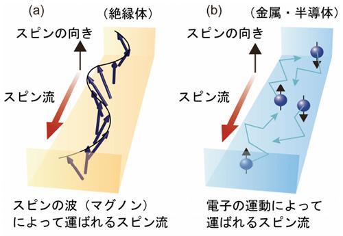 スピン流とスピンの波(マグノン)の模式図