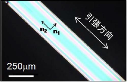 この研究で開発した異方性Li0.25Na0.25K0.25Cs0.25PO3ガラスの偏光顕微鏡写真