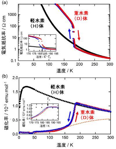 グラフ. (a)の電気伝導性(電気抵抗率)と(b)の磁性(磁化率)の熱による切り替えを示すグラフ。青丸、赤丸は今回開発した重水素(D)体 κ-D3(Cat-EDT-TTF)2 のデータ。低温へ冷却した場合、低温から加熱した場合の結果をそれぞれ表している。黒丸は研究グループが 2013 年に開発した軽水素(H)体 κ-H3(Cat-EDT-TTF)2 のデータ。