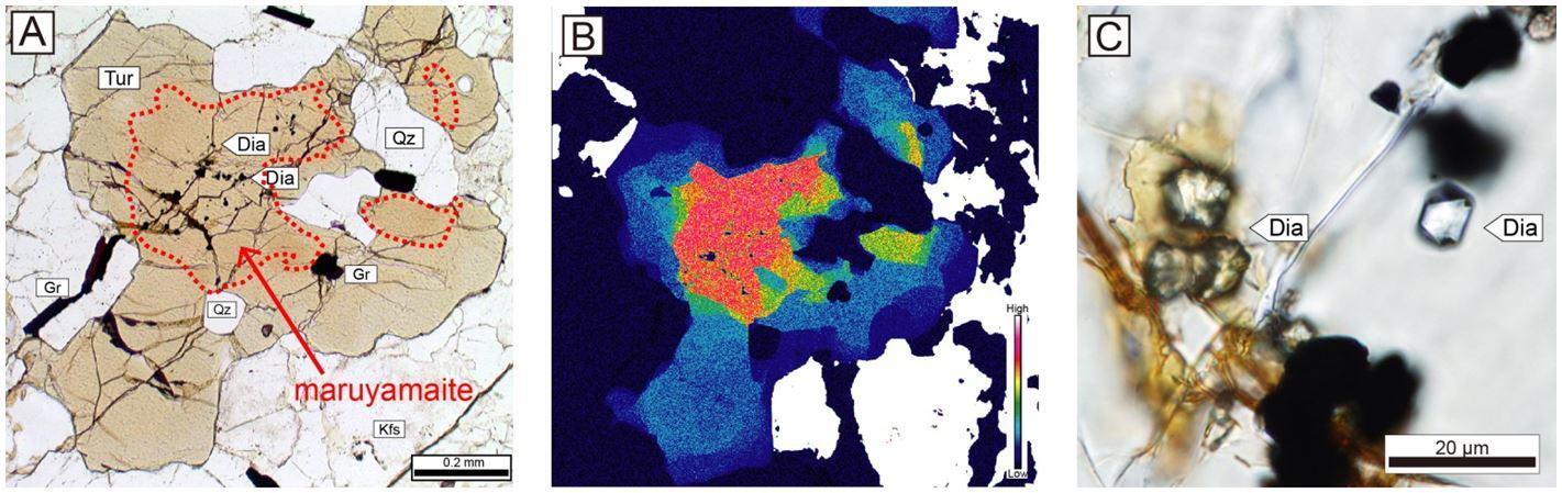 新鉱物と認定された丸山電気石の顕微鏡写真。Aは、茶色の電気石のうち、赤色破線で囲まれた部分が丸山電気石。Bは、電気石(写真Aと同じ粒子)のカリウム元素マッピング結果で、赤い部分ほどカリウムが多く含まれる。Cは、丸山電気石に含まれるダイヤモンド(Diaの矢印の先、10μm程度の微細粒子)の顕微鏡写真。
