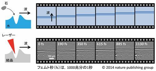 今回開発した超高速カメラで撮影した熱の波の伝わりを説明した図(下)と、水面の波の図(上)との対比