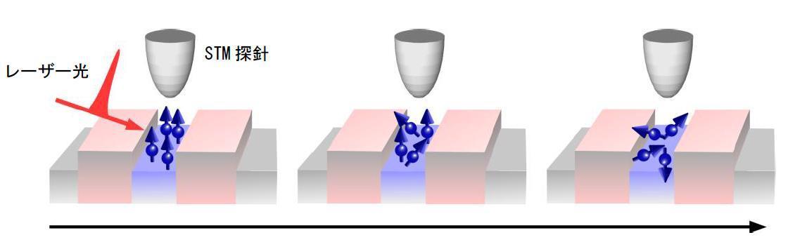 量子井戸の中、配向した電子スピンの向きが乱れていく様子の模式図