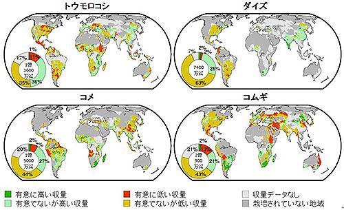 通常年と比べたラニーニャ年の平均作物収量の変動