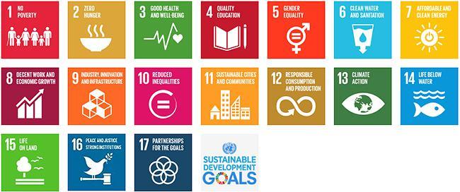 図 SDGsの17の目標(提供・UNDP)