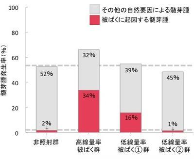 グラフ 時間当たりの被ばく量の違いなどによる発がん率の違い。左から2〜4番目の棒グラフはそれぞれ、被ばく線量500ミリシーベルト短時間照射、同4日間照射、被ばく線量100ミリシーベル4日間照射の各髄芽腫発生率 (放射線医学総合研究所研究グループ作成・提供)