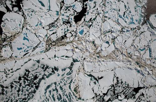写真 観測衛星が撮影した7月16日の北極海の一部のチュクチ海の海氷。一部が溶けて青い海面が見える(提供NASA/Goddard/Operation IceBridge)