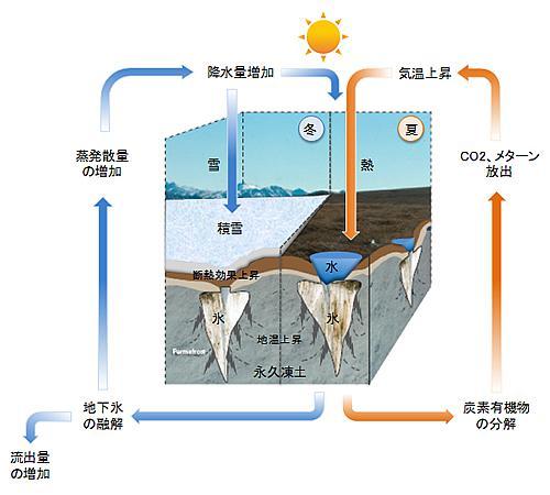 積雪変化による地温変化が北極気候システムに及ぼす影響の模式図